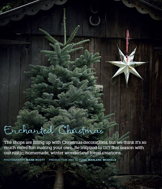 One of this year's beautiful christmas tree selections that was recently profiled in Image and Living Magazine www.image.ie
